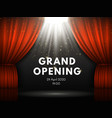 grand opening poster with red curtains at theater vector image