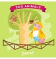 Zoo Animal Parrot vector image vector image