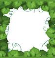 an ivy leaf border vector image
