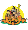 Dogs in a pumpkin vector image vector image