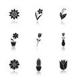flowers drop shadow black glyph icons set vector image