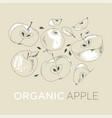 fresh apples hand drawn set vector image vector image