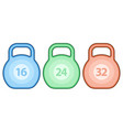 kettlebell weight set vector image