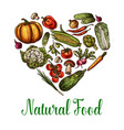 natural vegetables food sketch heart poster vector image vector image