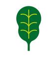 salad leaf simple art geometric vector image vector image