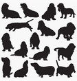 silhouettes best hound dog vector image vector image