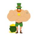 strong Leprechaun Powerful big leprechaun in Green vector image vector image