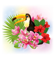tropical flowers and a toucan vector image vector image