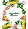 vegetables watercolor frame mushrooms vector image vector image