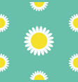 white daisy chamomile round icon cute flower vector image