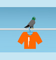 bad pigeon bird shit on t-shirt vector image