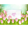 Bouquet of tulips EPS 10 vector image vector image