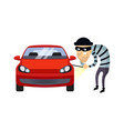 car insurance and theft vector image