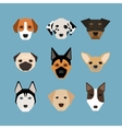 Dogs in flat style vector image vector image