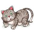 Fat gray cat vector image vector image
