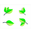 Floral icons green leaves vector image vector image