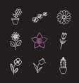 flowers chalk icons set vector image