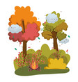 isolated camp fire design vector image vector image