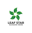 leaf star logo design template isolated vector image