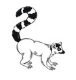 lemur icon outline vector image