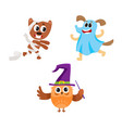 owl dog and bear characters in halloween costumes vector image