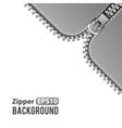 Silver zipper background vector image