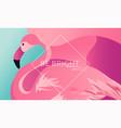 tropical vacation layout flamingo bird for web vector image vector image