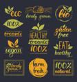 ecoorganicbio logo cards templates vector image