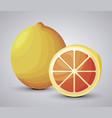 fresh orange fruit with slice vector image vector image