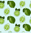 hand drawn seamless pattern with lime fruit vector image
