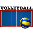 Volleyball court and ball vector image vector image