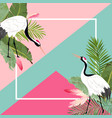 crane birds and tropical leaves summer banner vector image