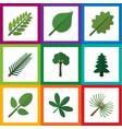 flat icon natural set of evergreen park alder vector image vector image