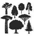 trees forest black silhouettes isolated on vector image