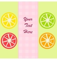 Citrus fruits slices vector image vector image