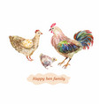 domestic bird family hen cock and chick vector image