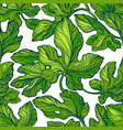 foliage seamless pattern texture leaf fig vector image vector image