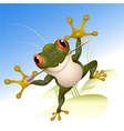 The lucky frog vector image vector image