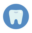 tooth icon on blue round dentist symbol vector image vector image
