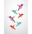 Beautiful humming birds vector image vector image