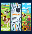 cattle farm animals farmer gardening tools banner vector image vector image