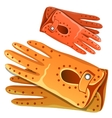 Fashion leather womens gloves Clothing accessory vector image