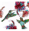 floral with hibiscus flowers and hummingbirds vector image