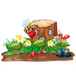insect in nature vector image vector image