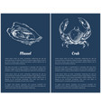 seafood set with mussel and crab engraved sketch vector image vector image