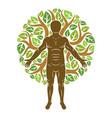athletic man created using organic green tree vector image vector image