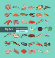 colorful sketch natural seafood collection vector image vector image