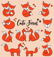 Cute foxes set vector image vector image