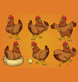 hen with cartoon style set vector image vector image