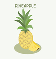 Pineapple icon in flat style Isolated object vector image vector image